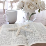 Scripture Sunday- Love: 1 Corinthians 13:4-8