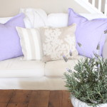 Starfish Cottage Lavender in the Family Room