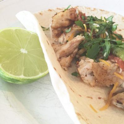 Fresh Fish Tacos- with Florida Red Snapper