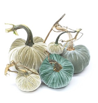 Totally Coastal Tuesday: Silk Velvet Pumpkins by Hot Skwask